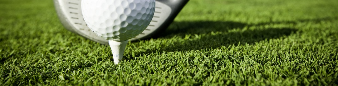 golfTeeDriver1083
